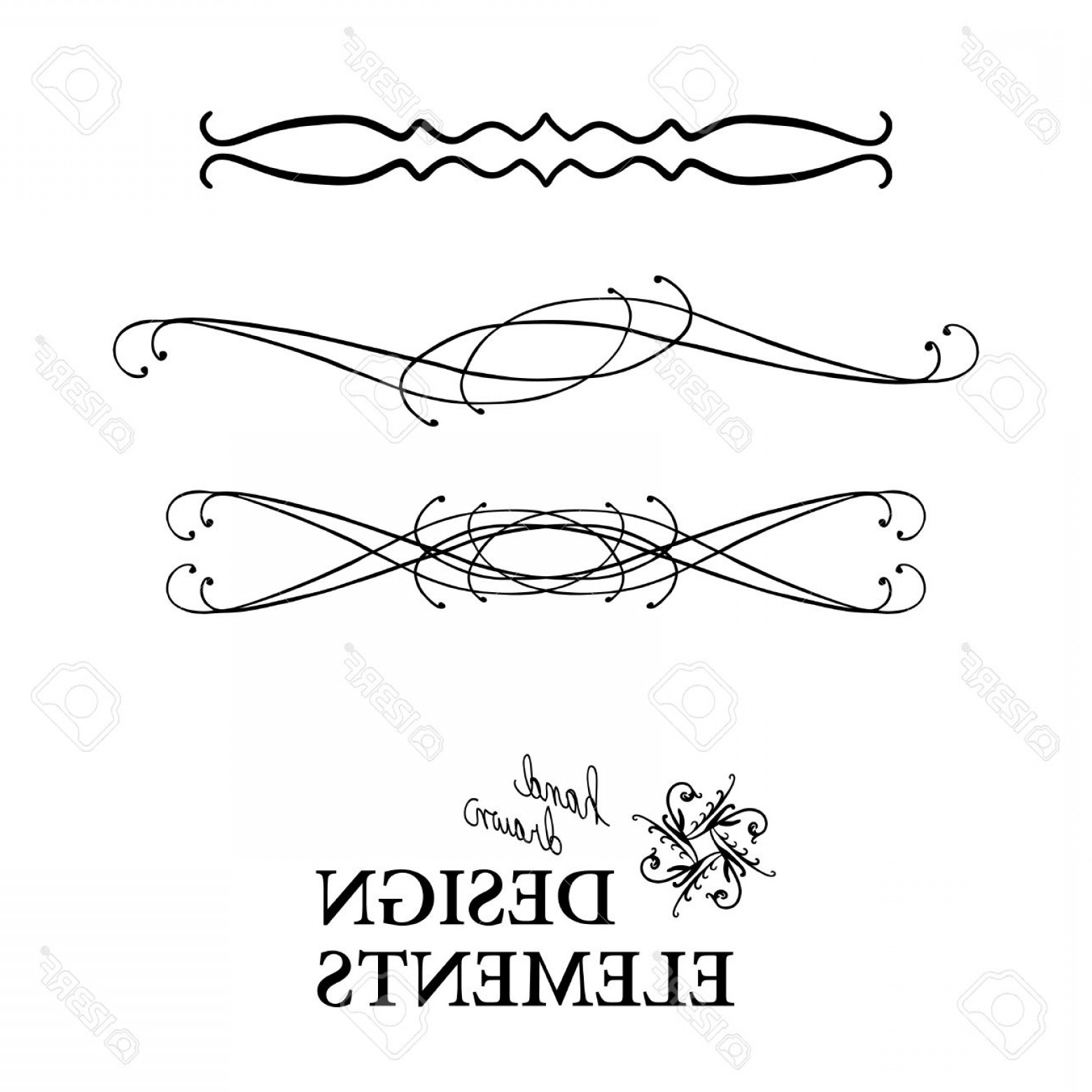1560x1560 Photostock Vector Vector Design Element Beautiful Fancy Curls And