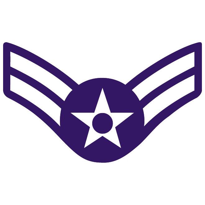 660x660 Master Sergeant Air Force Rank