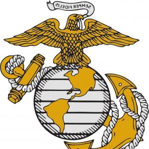 300x300 P Official Us Navy Logo Createmepink