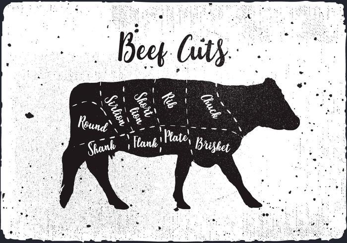 700x490 Fondo Libre Del Vector De Los Cortes De La Carne De Vaca