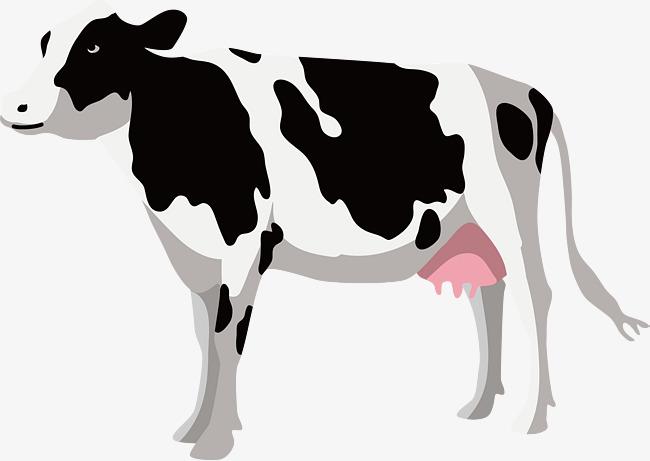 650x461 Rancho Las Vacas Vector Png Blanco Y Negro Flor Vaca Png Y Vector