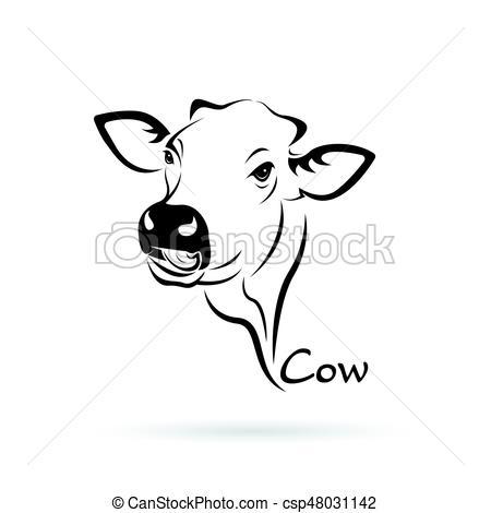 450x470 Cabeza, Vaca, Granja, Fondo., Vector, Animal., Blanco.