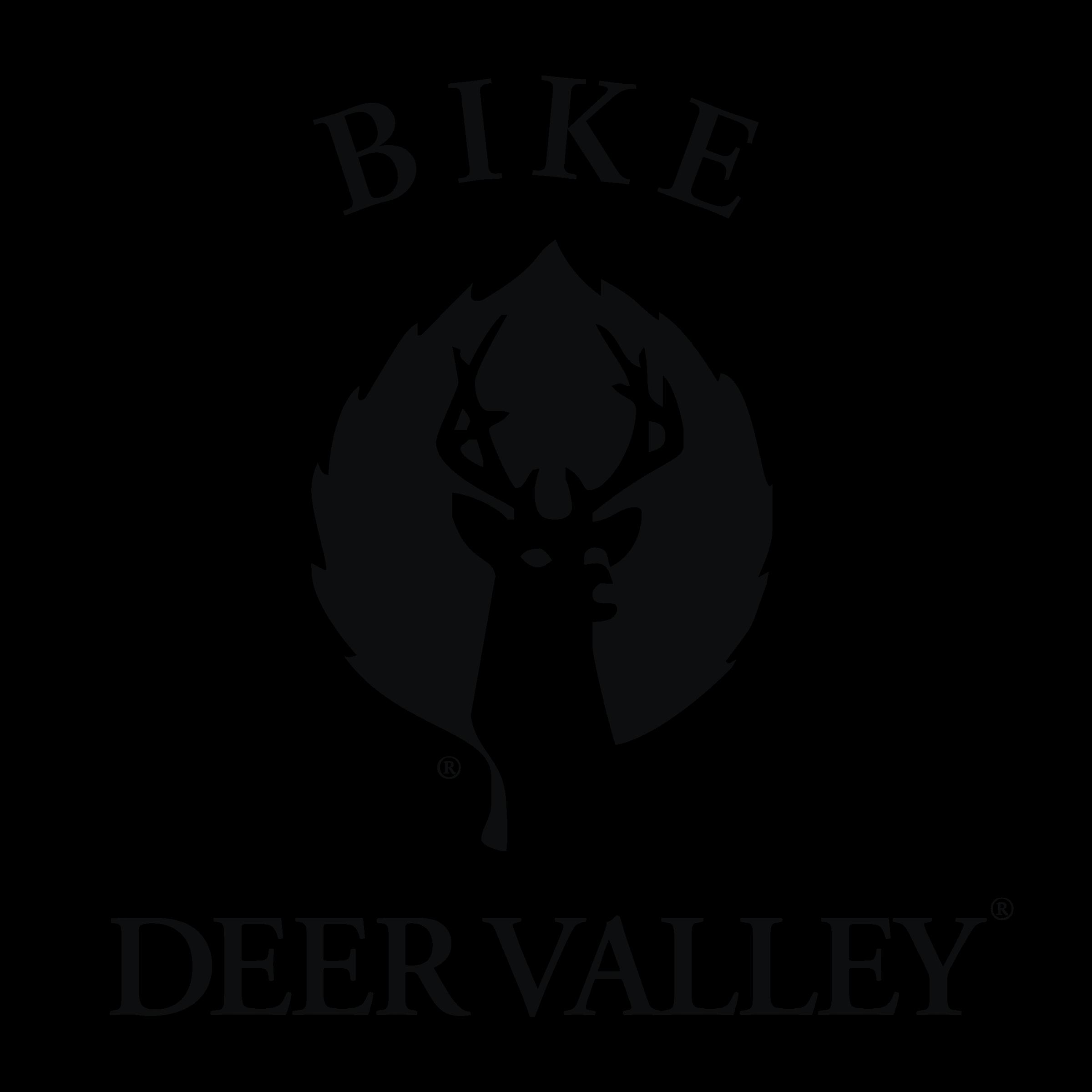 Valley Vector