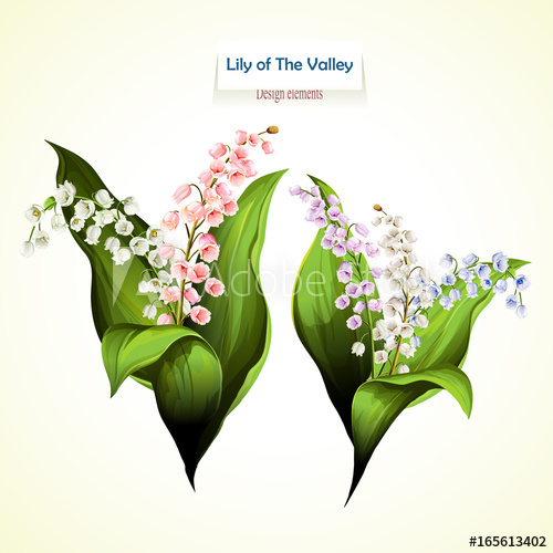 500x500 Lily Of The Valley. Vector Illustration Of Two Bouquet. Can Be