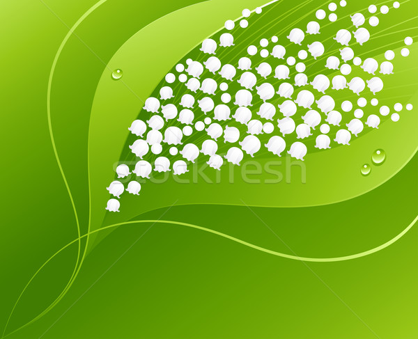 600x487 Lily Of The Valley. Vector Illustration. Vector Illustration