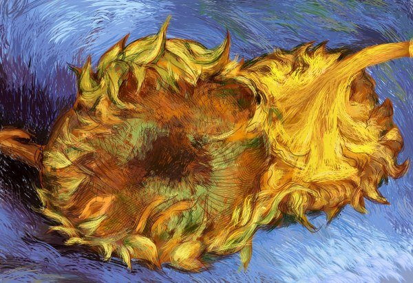 600x411 Free Vector Van Gogh Sunflower Psd Files, Vectors Amp Graphics