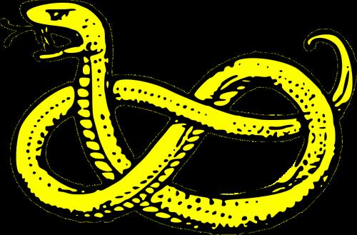 500x329 Collection Of Free Vector Adder Snake. Download On Ubisafe