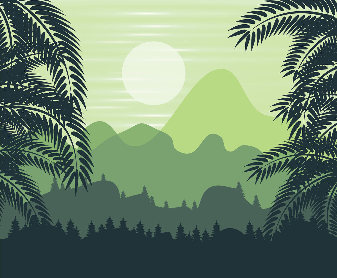 1136x936 Jungle Forest Background Vector Vector Art Amp Graphics