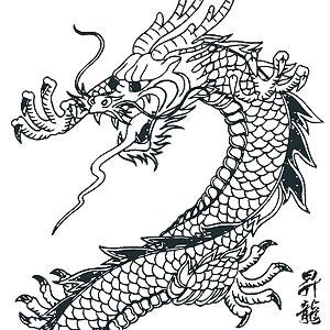 300x300 Japanese Dragon Vector Art