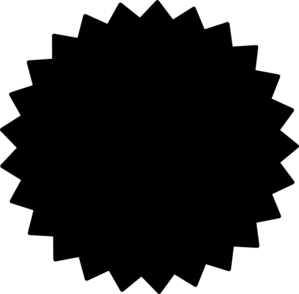 299x294 Starburst Vector