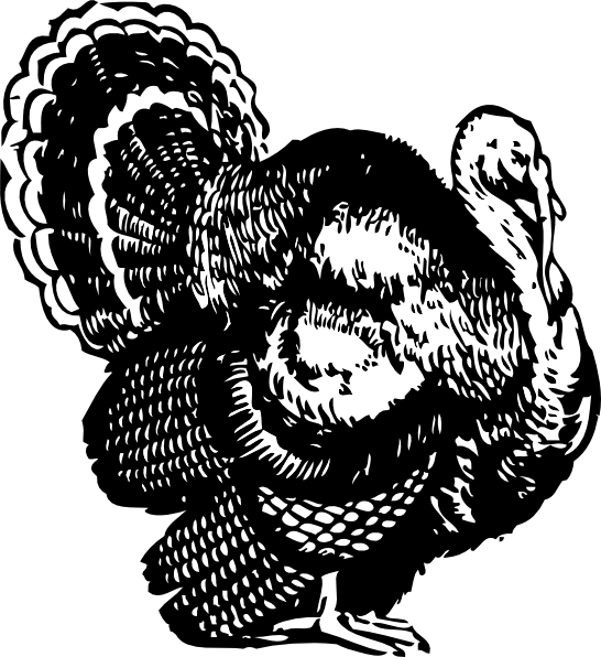 546x596 Turkey Dinner Vector Library Library Black And White