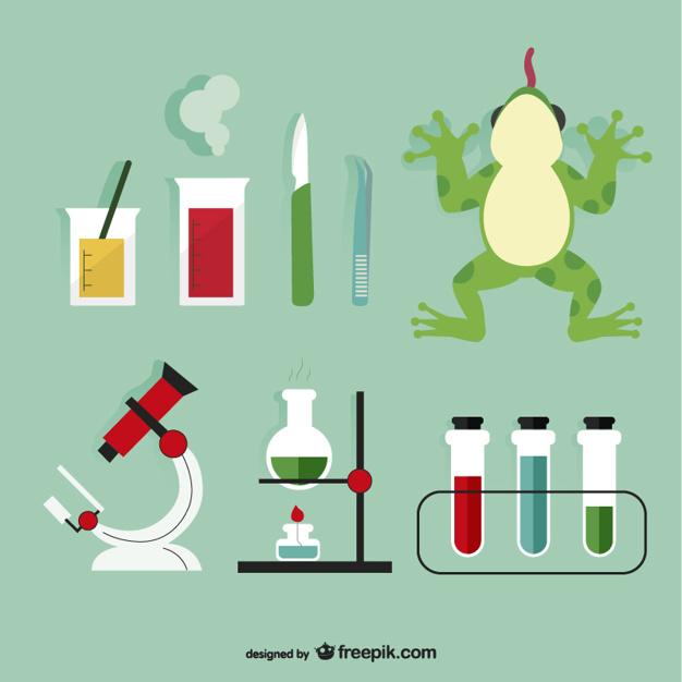 626x626 Biology Laboratory Elements Vector Free Download