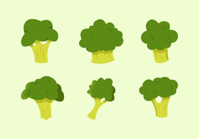 700x490 Broccoli Vector Illustrations Free