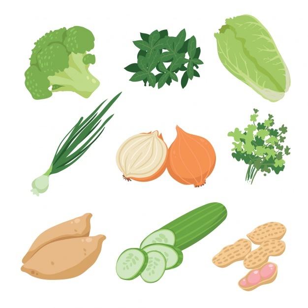 626x626 Broccoli Vectors, Photos And Psd Files Free Download