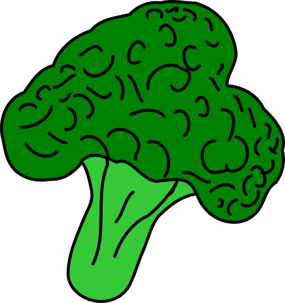 564x601 Broccoli Clip Art Free Vector 4vector