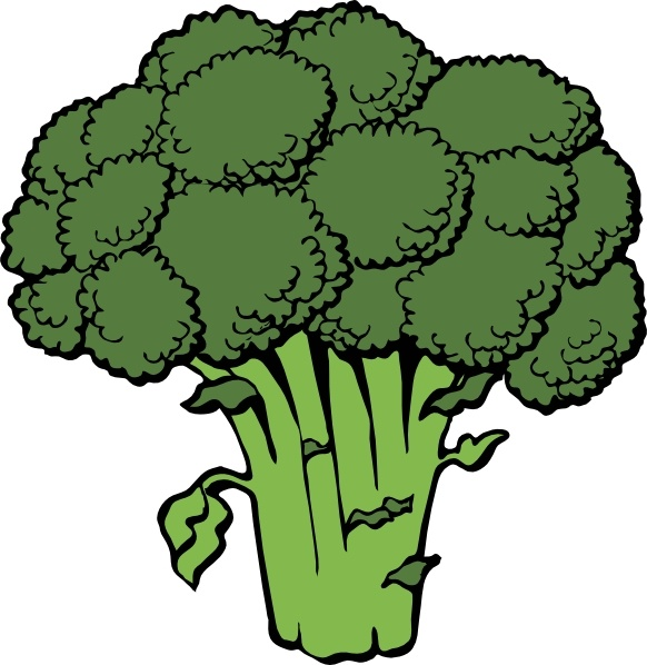 582x598 Broccoli Clip Art Free Vector In Open Office Drawing Svg ( .svg
