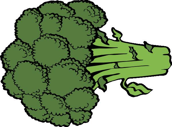 600x443 19 Broccoli Vector Huge Freebie! Download For Powerpoint
