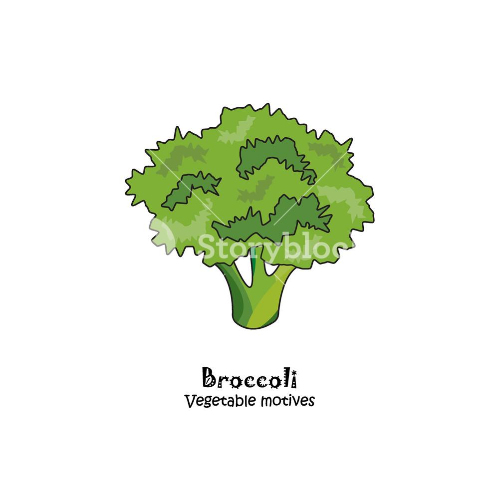 1000x1000 Color Vector Illustration. Broccoli Icon Royalty Free Stock Image