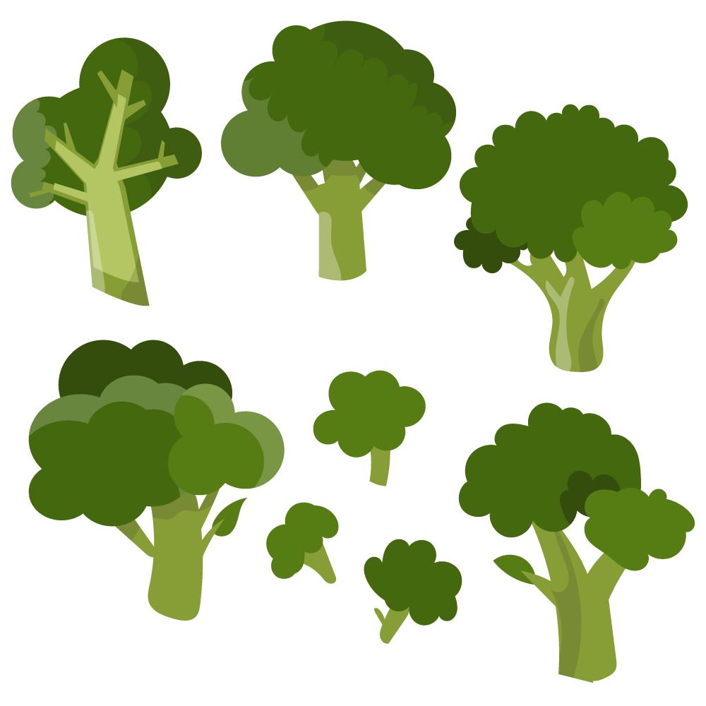 1000x1000 Fresh Broccoli Vector Set