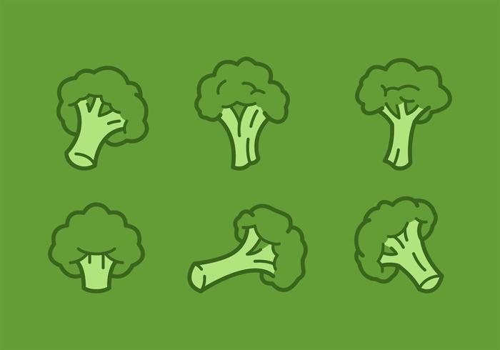700x490 Outlined Broccoli Vector Illustrations