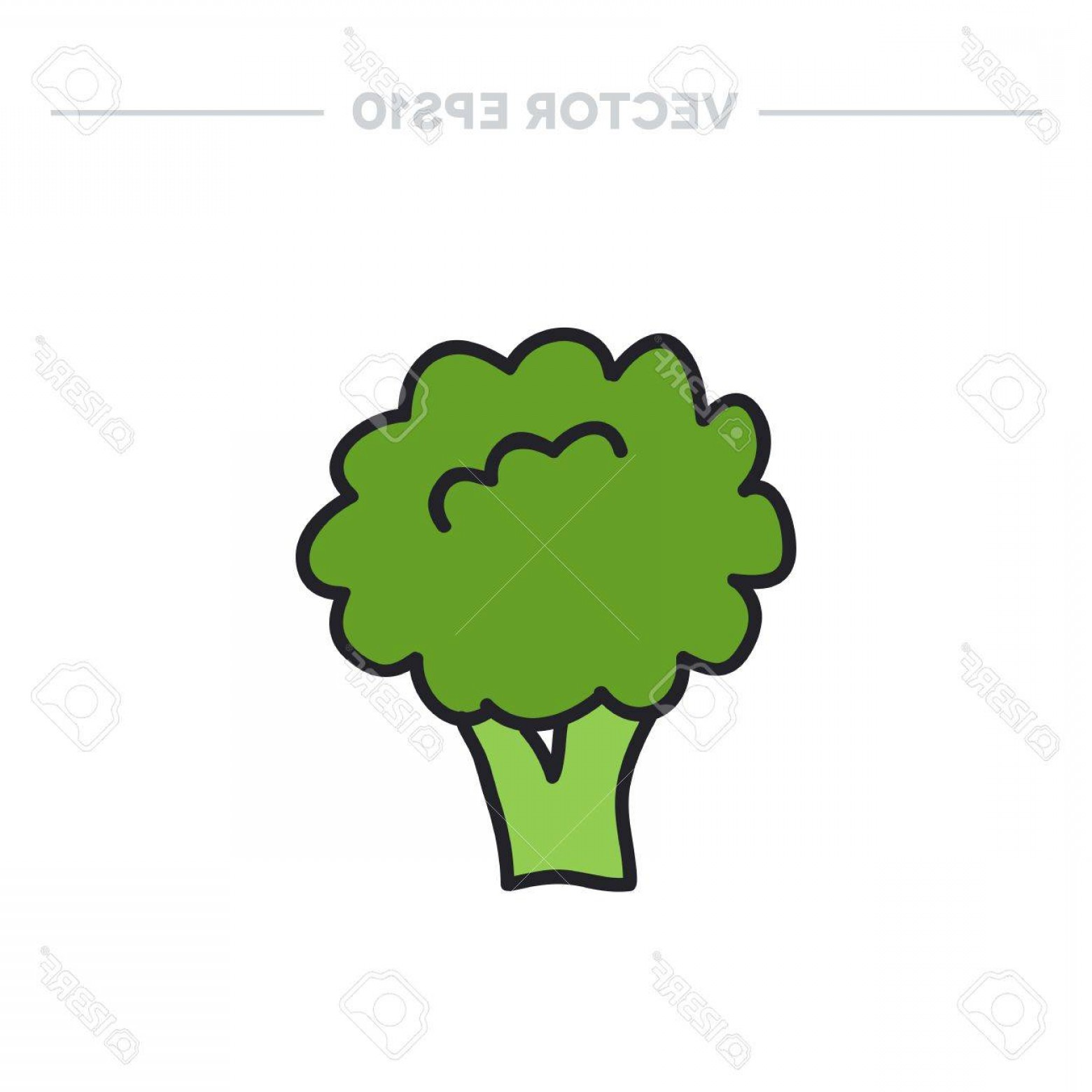 1560x1560 Broccoli Clipart Vector Arenawp