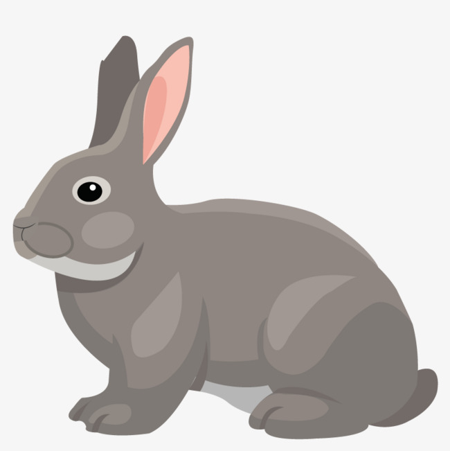 650x651 Vector Art Animal Bunny, Animal Vector, Bunny Vector, Gray Rabbit