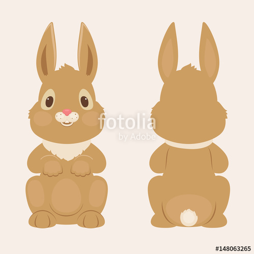 500x500 Bunnyrabbit Front And Back View Stock Image And Royalty Free