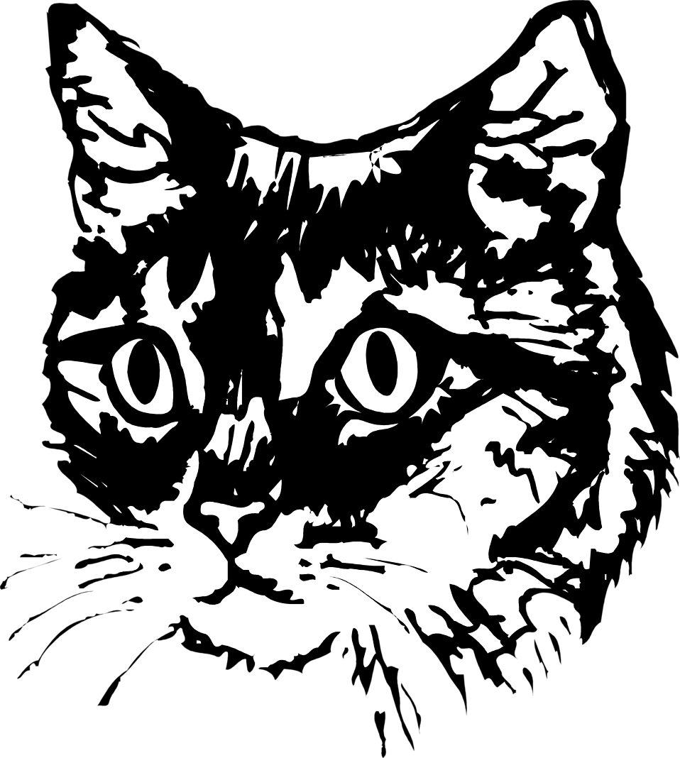 Vector Cat Face