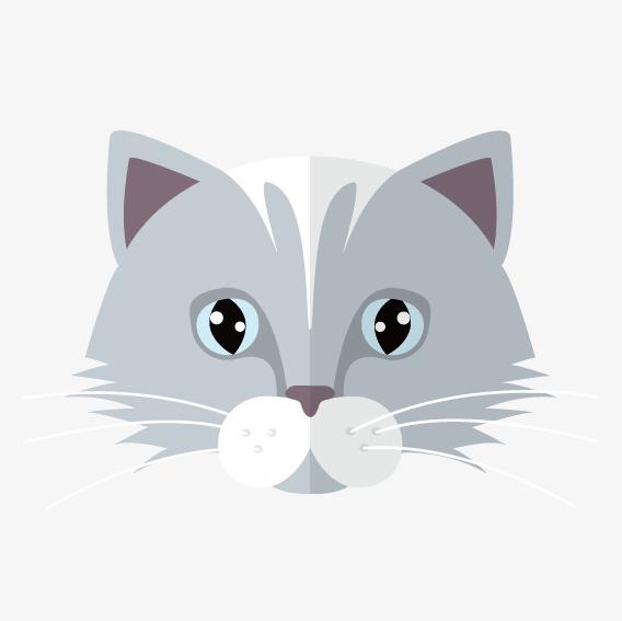 568x567 Grey Cartoon Cat Face, Cartoon Vector, Cat Vector, Face Vector Png