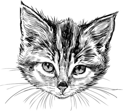 408x368 Cat Head Free Vector Download (2,400 Free Vector) For Commercial