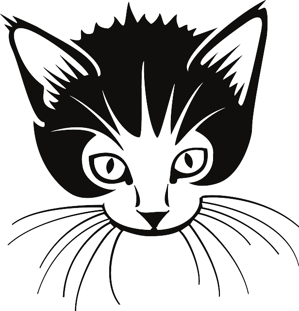 616x640 Free Vector Graphic Cat, Head, Cute, Animal, Ears