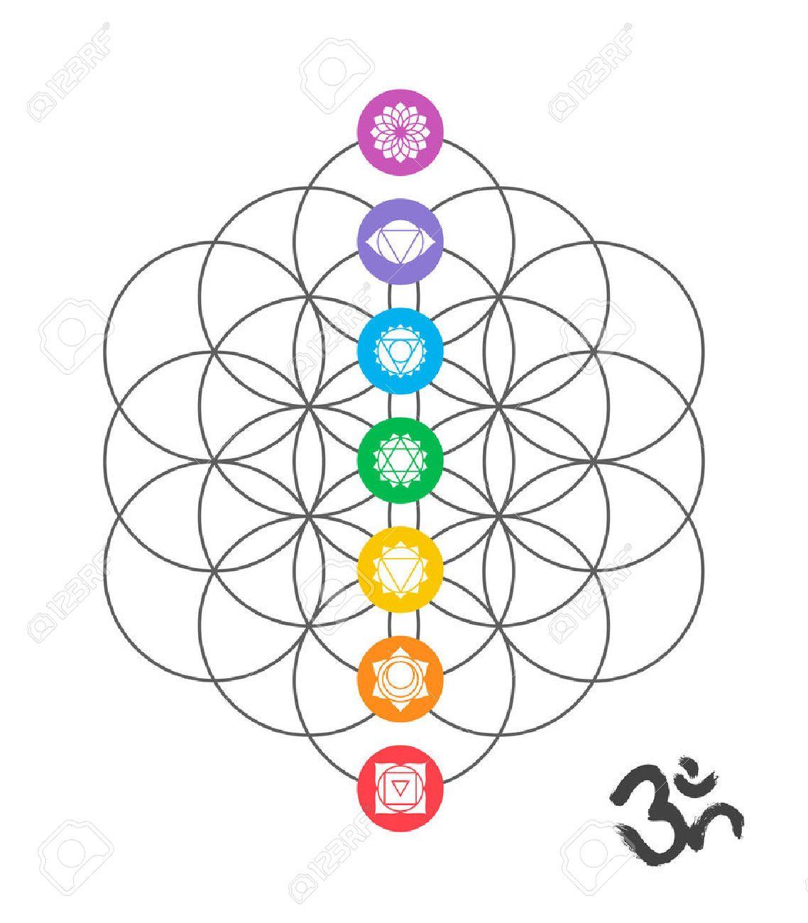 Vector Chakra Symbols