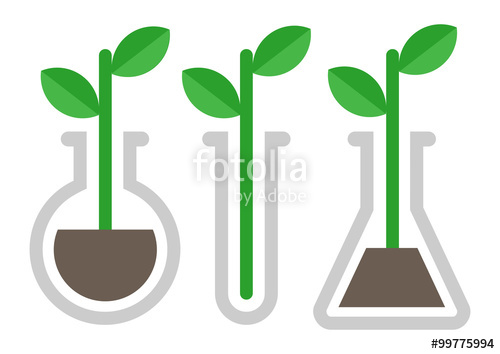 500x354 Chemistry Icon. Plant In Vitro Stock Image And Royalty Free