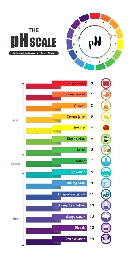 450x900 Download The Scale Universal Indicator Color Chart Diagram Stock