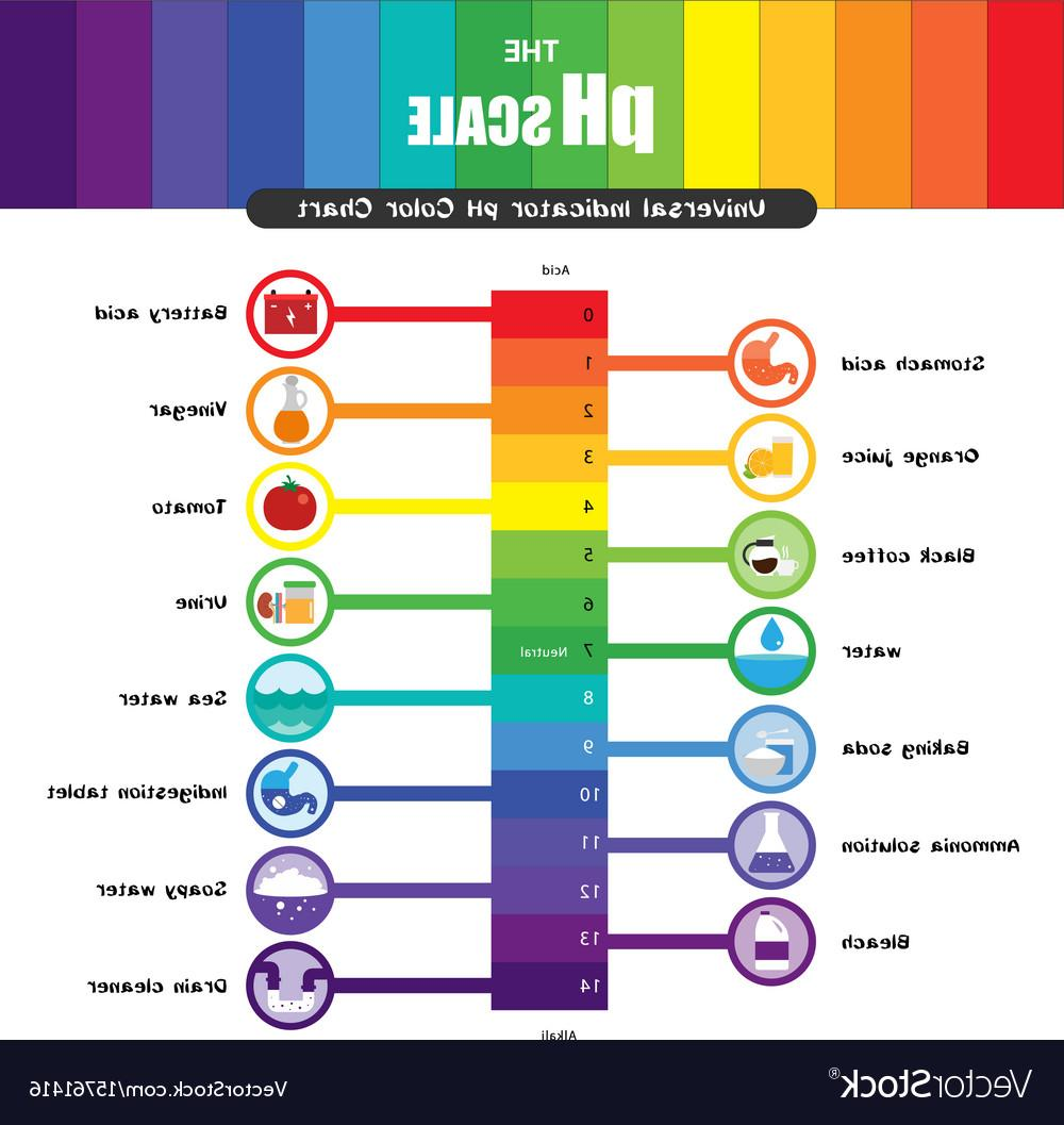 1000x1057 Best Ph Scale Universal Indicator Color Chart Vector File Free