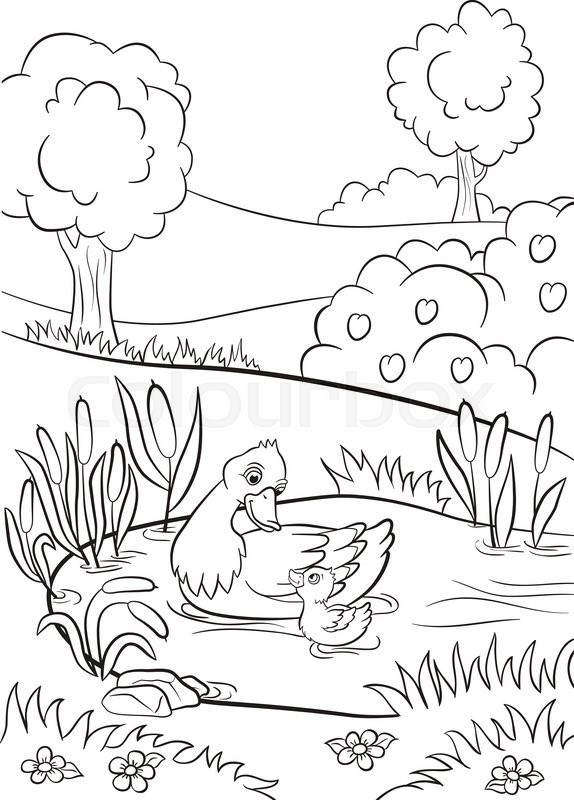 574x800 Coloring Pages. Kind Duck And Little Cute Duckling Swim On The