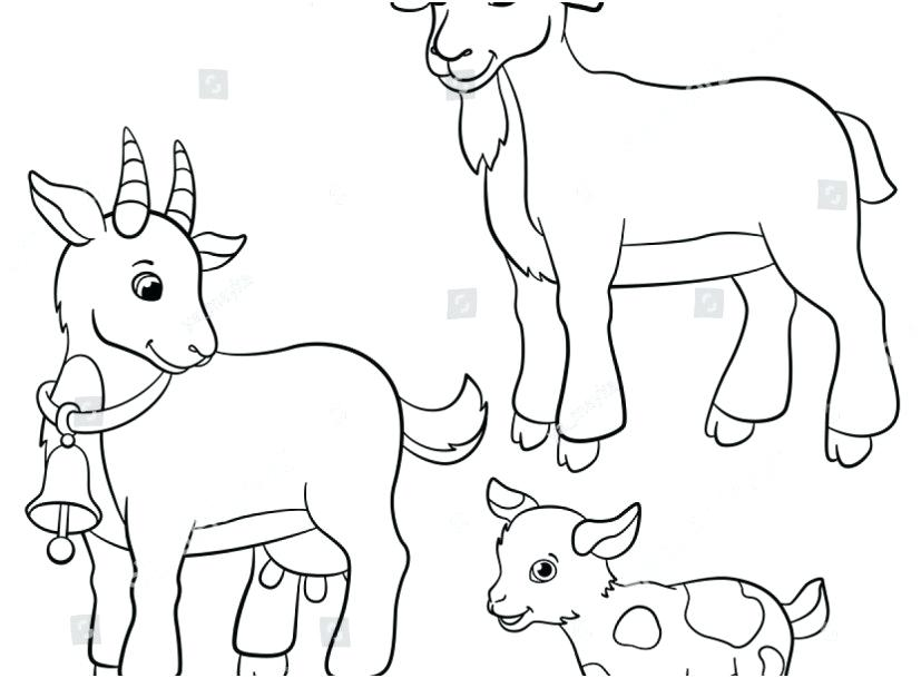 827x609 Coloring Pages Goat Family Coloring Books Footage Coloring Pages