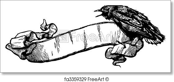 560x264 Free Art Print Of Vector Crow Banner Illustration. Great For