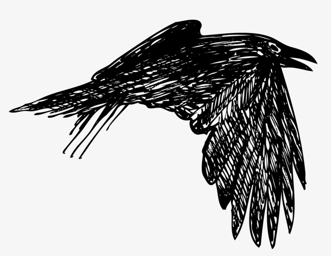 650x504 Swift Of Wings Of Birds, Wings Vector, Crow, Flying The Crows Png