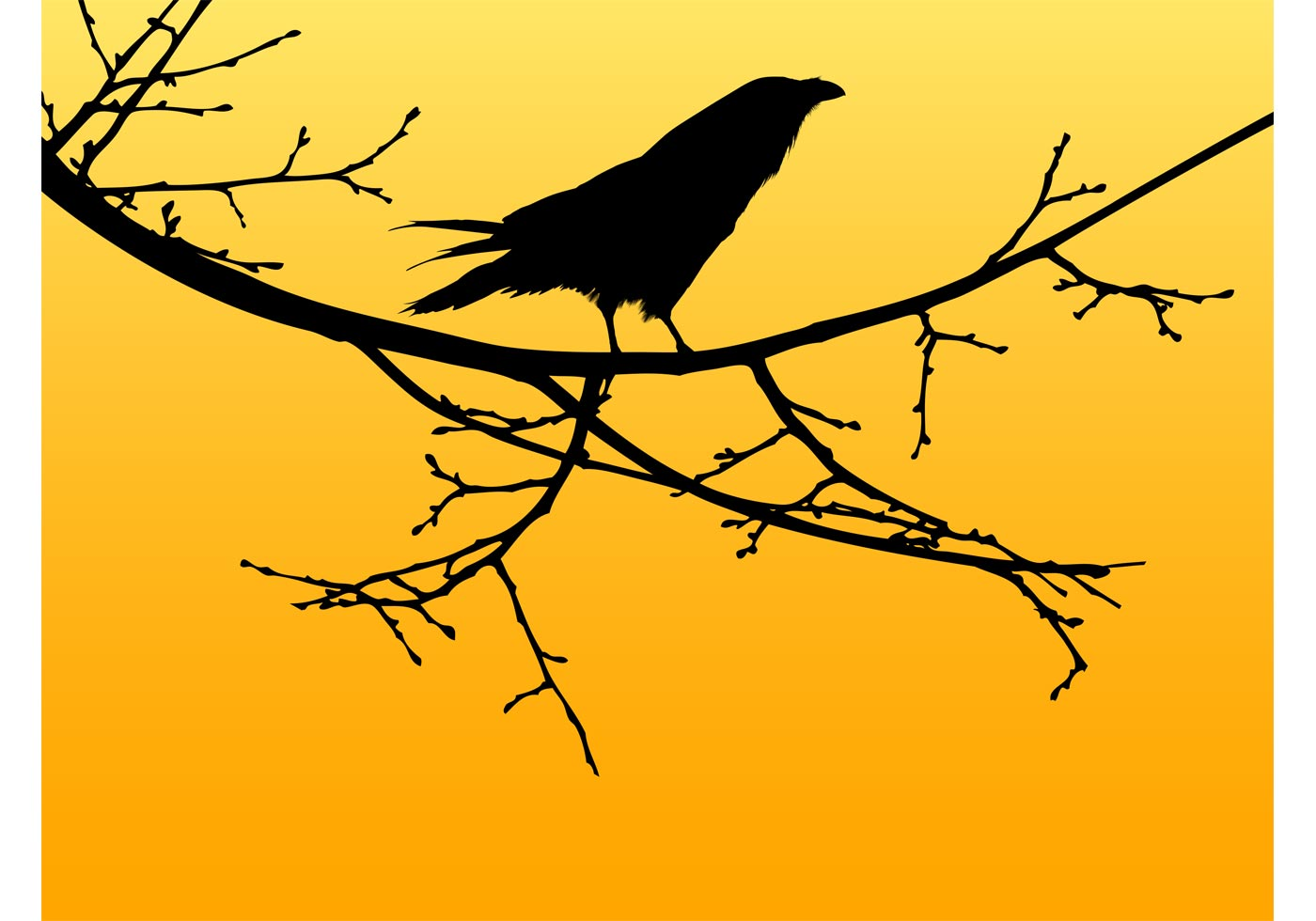 1400x980 Crow Bird Free Vector Art