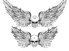220x165 Skull With Wings Tattoo Hand Drawn Skull Wing Vector Set Sticker
