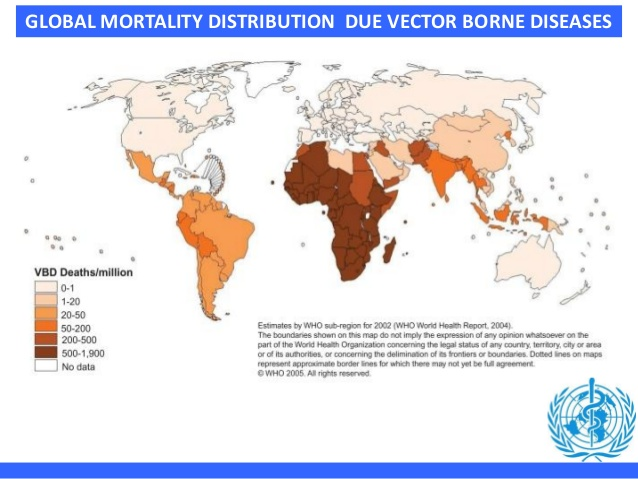 638x479 One Health Perspective And Vector Borne Diseases