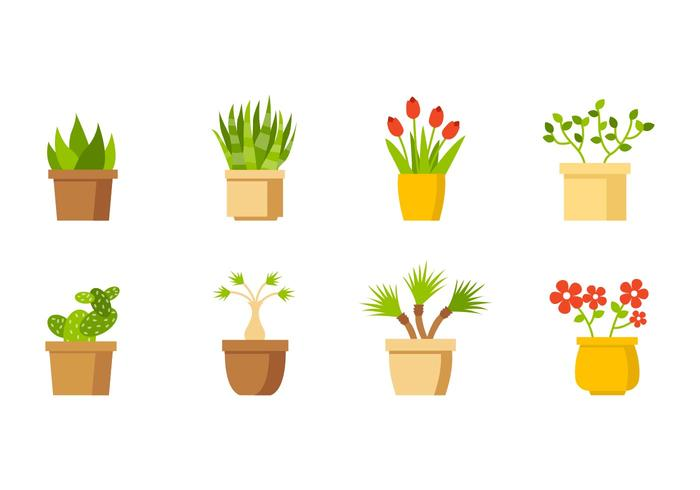 700x490 House Plant Collection Vector