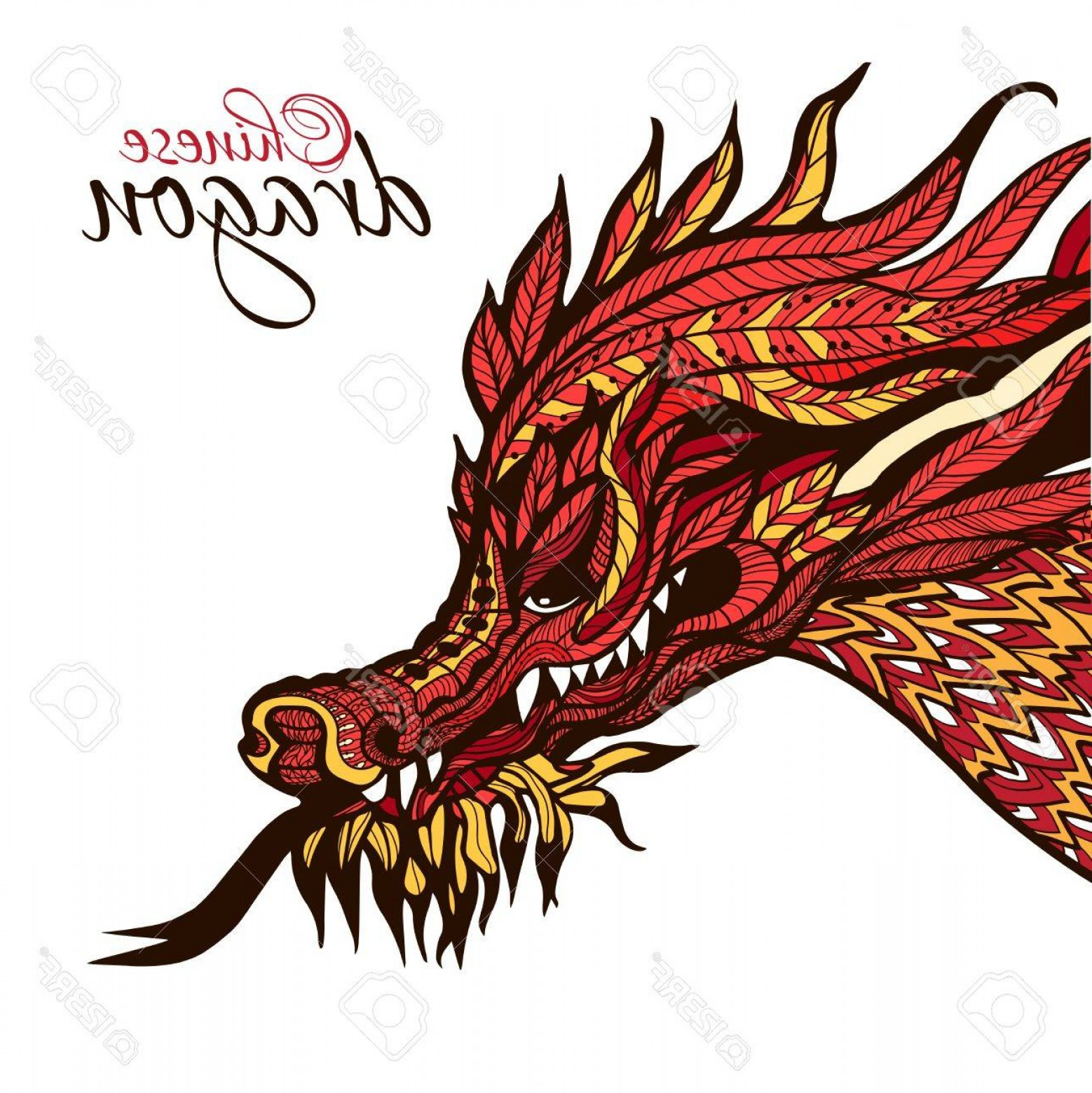 1558x1560 Photostock Vector Hand Drawn Chinese Dragon Head With Colored