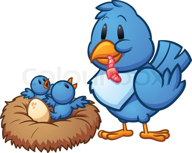 800x639 Mother Blue Bird Feeding Babies In A Nest. Vector Illustration