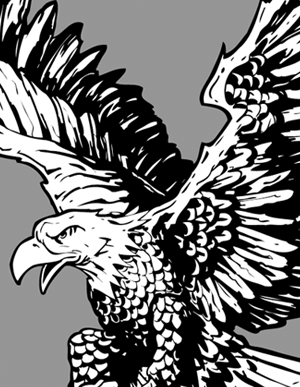 300x387 Bald Eagle Clipart T Shirt