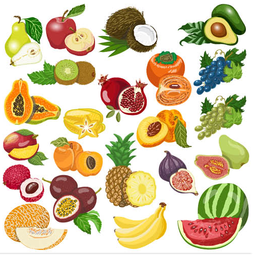 498x501 Fruits Vector Graphic 3 Ai Format Free Vector Download
