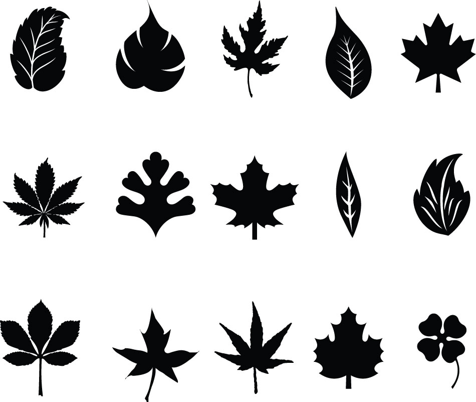 950x801 Leaves Silhouettes Vector Vector Graphic Freebies