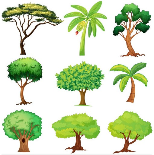 510x514 Trees Vector Graphic Ai Format Free Vector Download