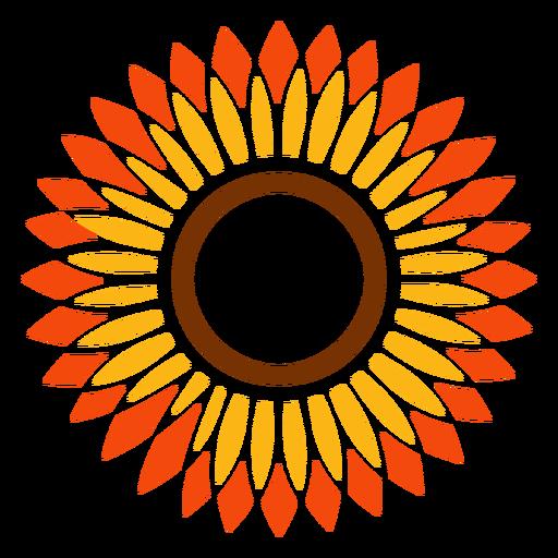 512x512 Flat Sunflower Head Vector Graphic